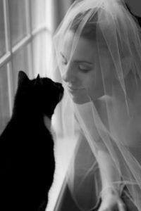 Black Cat and Bride