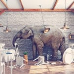 Conquering the Conflict Elephant in the Room: Relationships