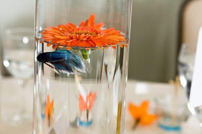 fish wedding ceremony